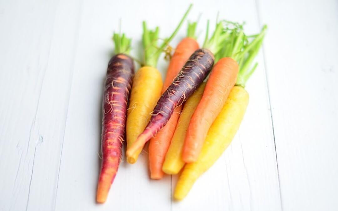 De wereld van de wortel